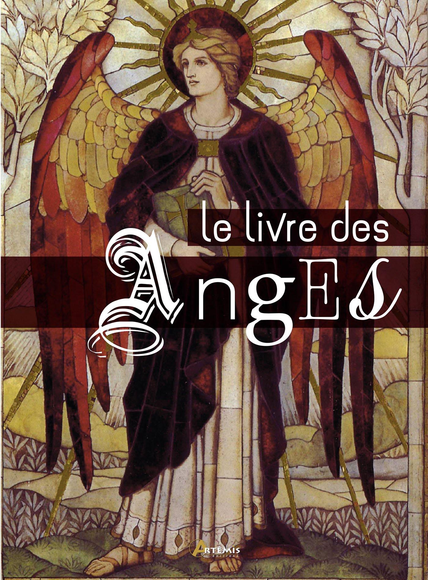 Le livre des anges Relié – 21 septembre 2017 Pablo Martin Avila Laura Tabourin Editions Artémis 2816012220