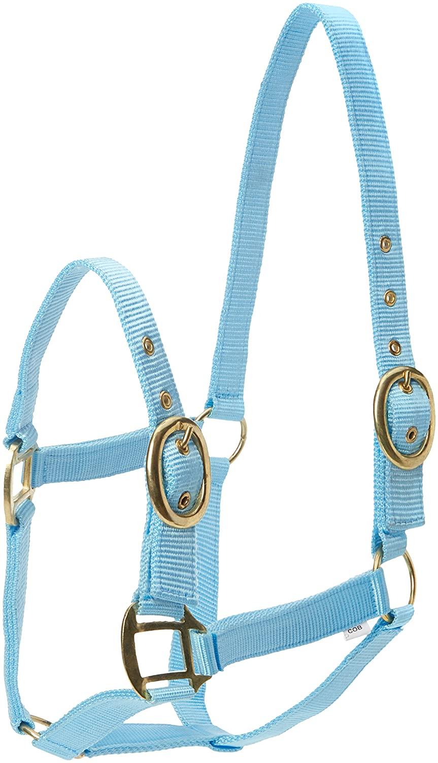 (Baby bluee, Pony) Horses Nylon Head Collar