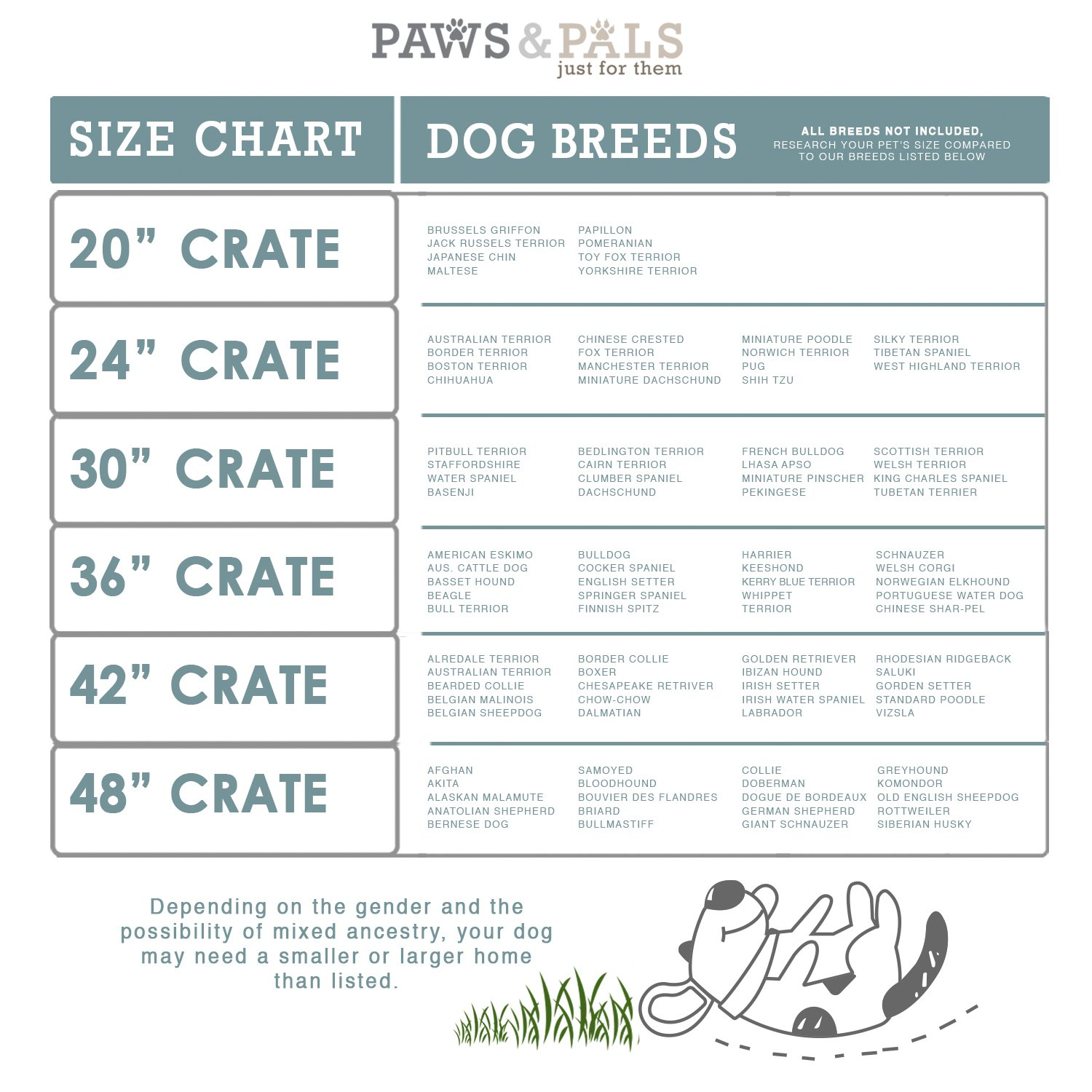 Typical Wire Dog Crate Sizing (Source: Paws & Pals, Amazon)