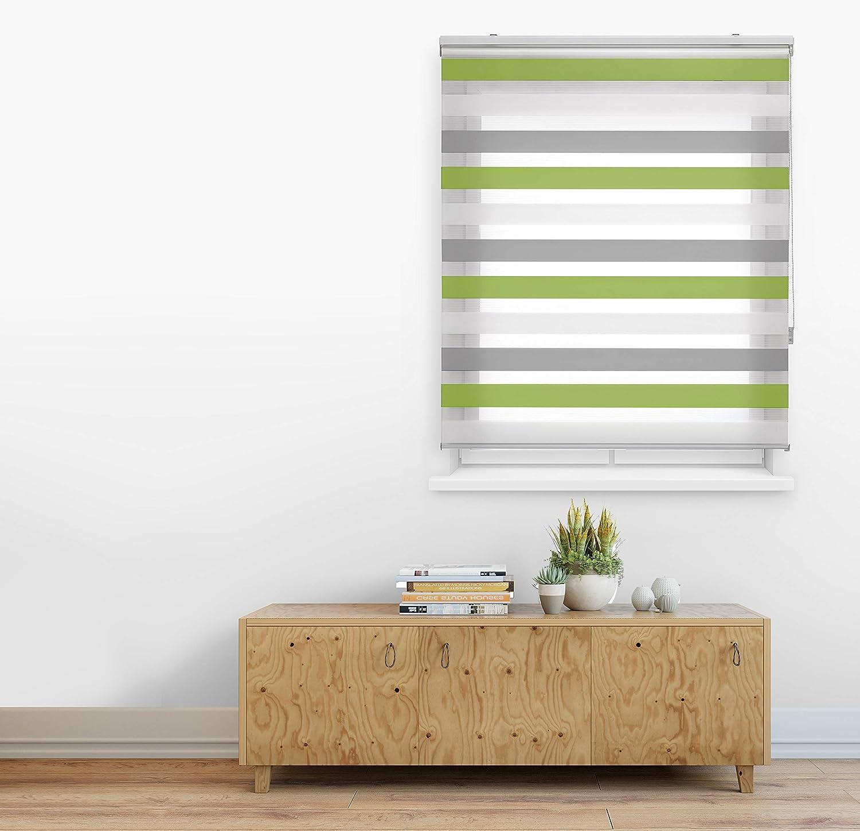 Blindecor Lira Estor Enrollable Doble Tejido, Noche y día,Tricolor 140 x 180 cm, Color Gris Pistacho, Poliéster