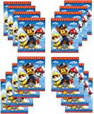 Paw Patrol Party Loot Bags 16 ct