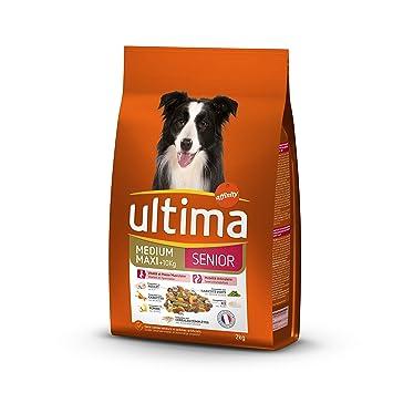 Ultima Pienso para Perros Medium-Maxi Senior con Pollo, Frutas y legumbres - 2 kg: Amazon.es: Productos para mascotas