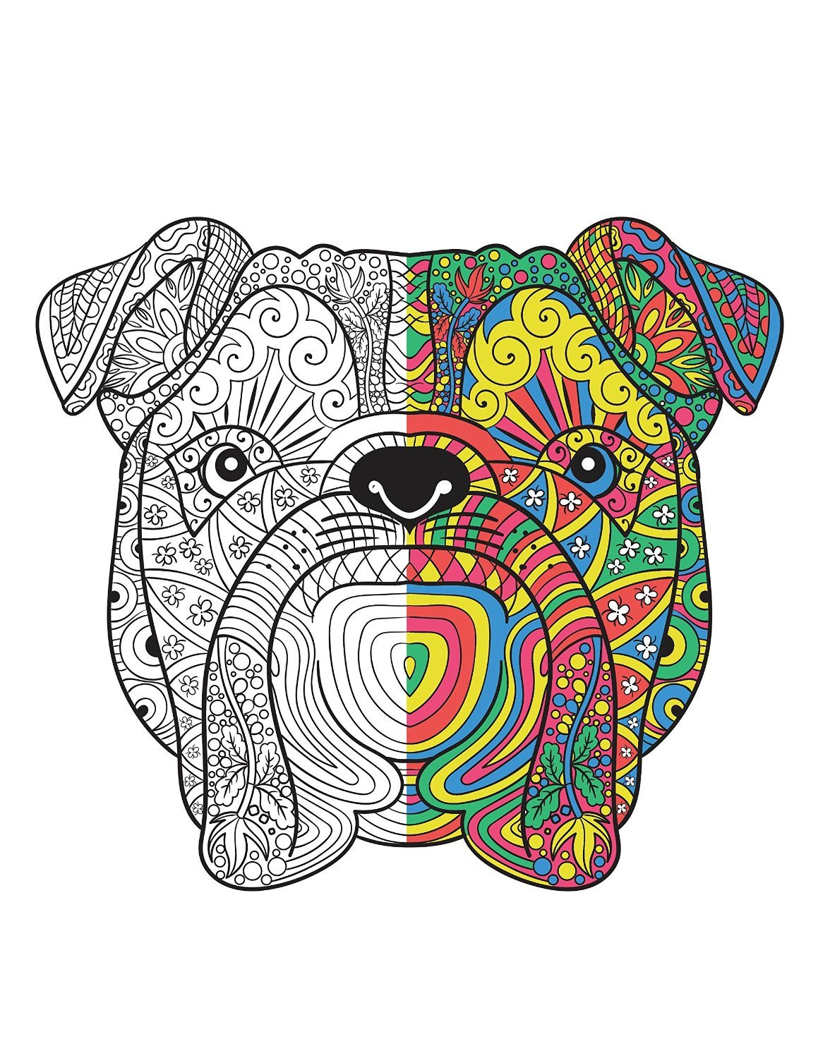 Amazon Adult Coloring Books Set