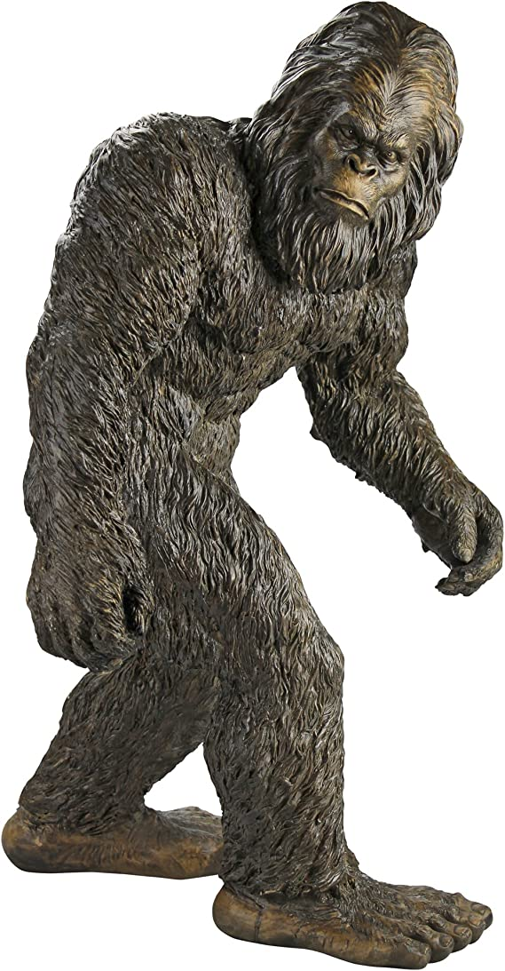 Sasquatch Big Foot Where is he Footie! oh he/'s in the trees
