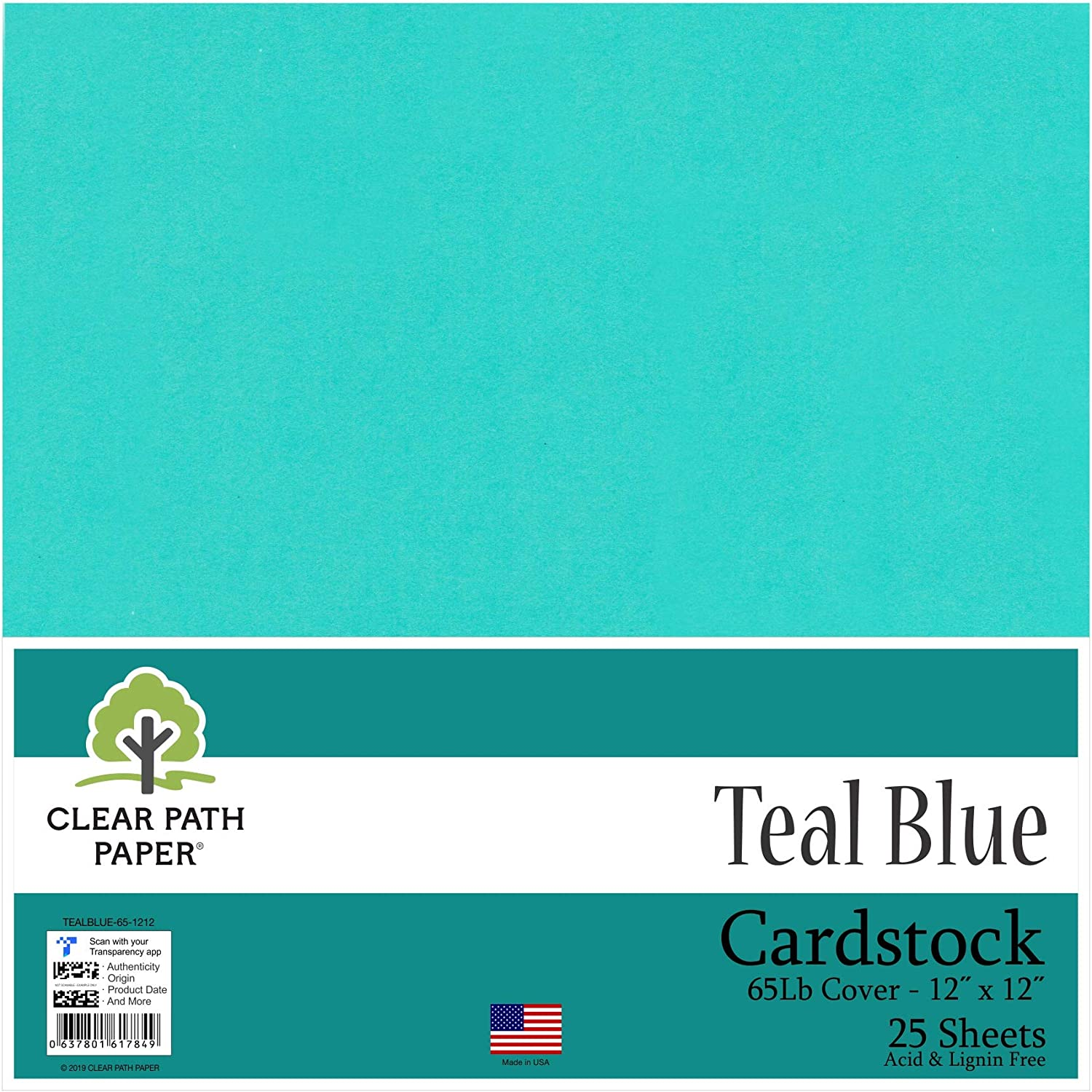 Teal Azul – Cartulina de 12 x 12 pulgadas – 65LB Cover: Amazon.es ...