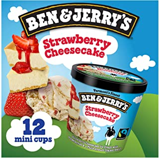 product image for Vermont's Finest Ice Cream, Non-GMO - Fairtrade - Cage-Free Eggs - Caring Dairy - Responsibly Sourced Packaging, Strawberry Cheesecake, 4 Oz. Mini Cups (12 count)