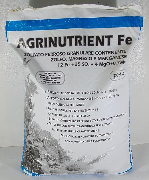 5 opinioni per AGRINUTRIENT SOLFATO FERROS0 GRANULARE DA 25 KG