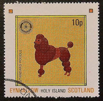 Amazoncom Standard Poodle Dog Framed Postage Stamp Art