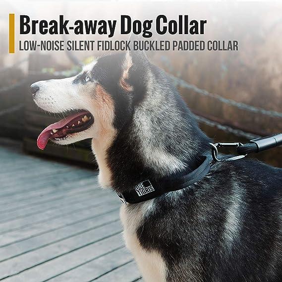 OneTigris - Collar para Perro con Hebilla de Medio Metal ...