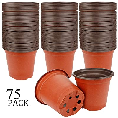 "Augshy 75 Pcs 4"" Plastic Plant Nursery Seed Starting Pots for Succulent Seedling Cutting Transplanting: Garden & Outdoor"