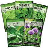 Sow Right Seeds - Herb Garden Seed Collection - Basil, Chives, Cilantro, Parsley, and Oregano Seeds for Planting; 5 Individua