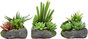Pure Garden Artificial Succulent Plant Arrangements in Faux Stone Pots 3 Piece Set in Assorted Sizes, Lifelike Greenery Home Decoration