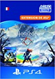 Horizon Zero Dawn: The frozen Wilds [Code Jeu PSN PS4 - Compte français]