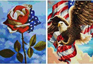 Ginfonr 5D DIY Diamond Painting Kit 2 Pack Flag Eagle & Rose Full Drill by Number Kits, Paint with Diamonds Art Craft Embroidery Rhinestone Cross Stitch Craft for Home(12x16 inch)