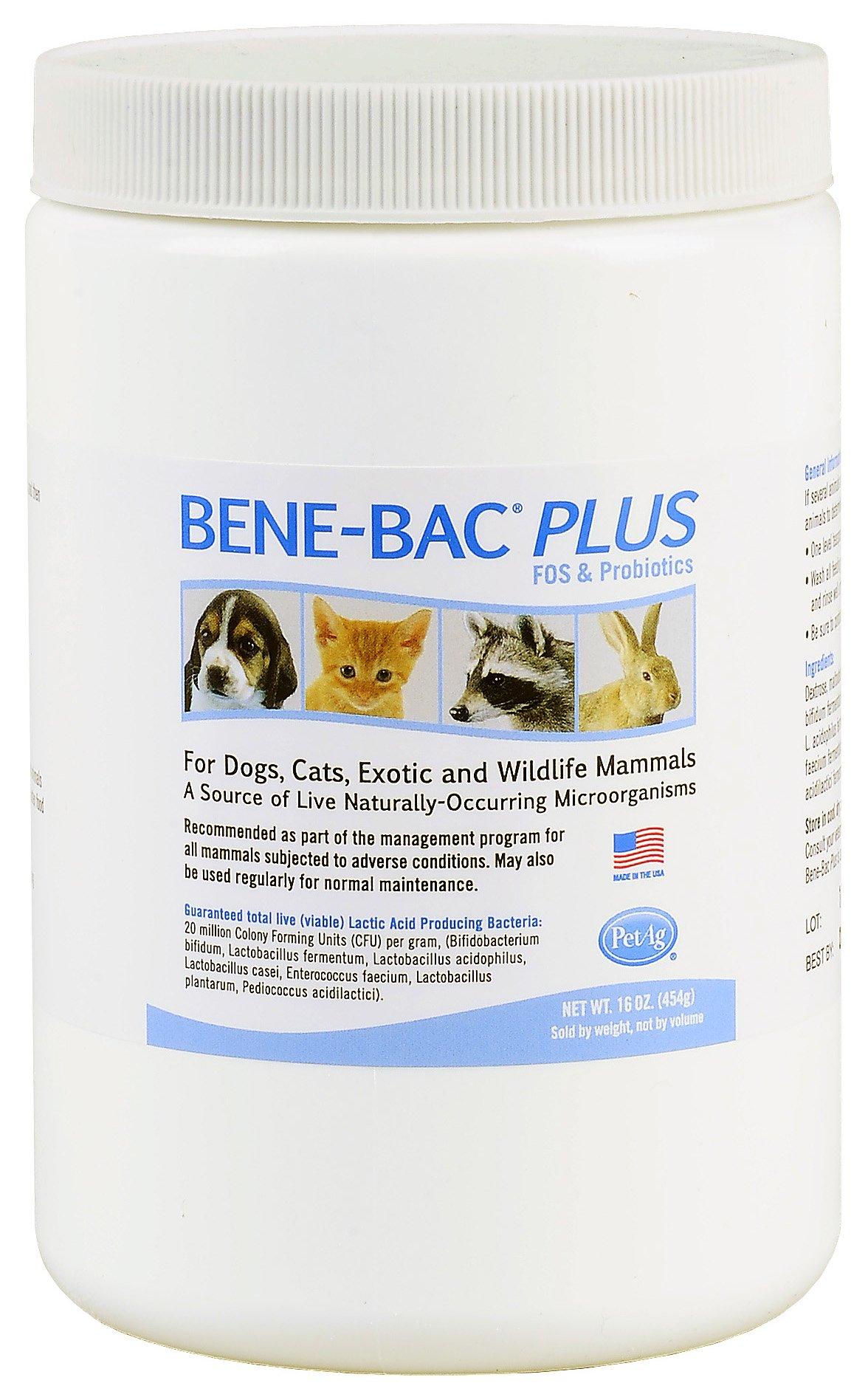 Bene-Bac Plus Prebiotic Pet Powder, 1-Pound