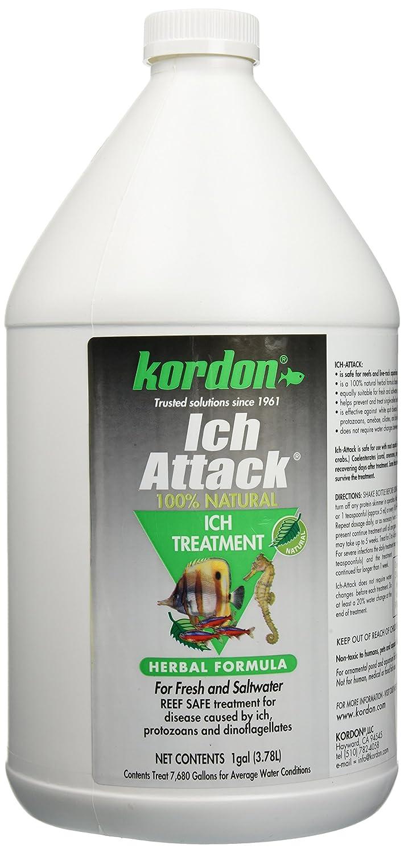 KORDON #39461 Ich Attack for Aquarium, 1-Gallon by Kordon B000YJ2VP4