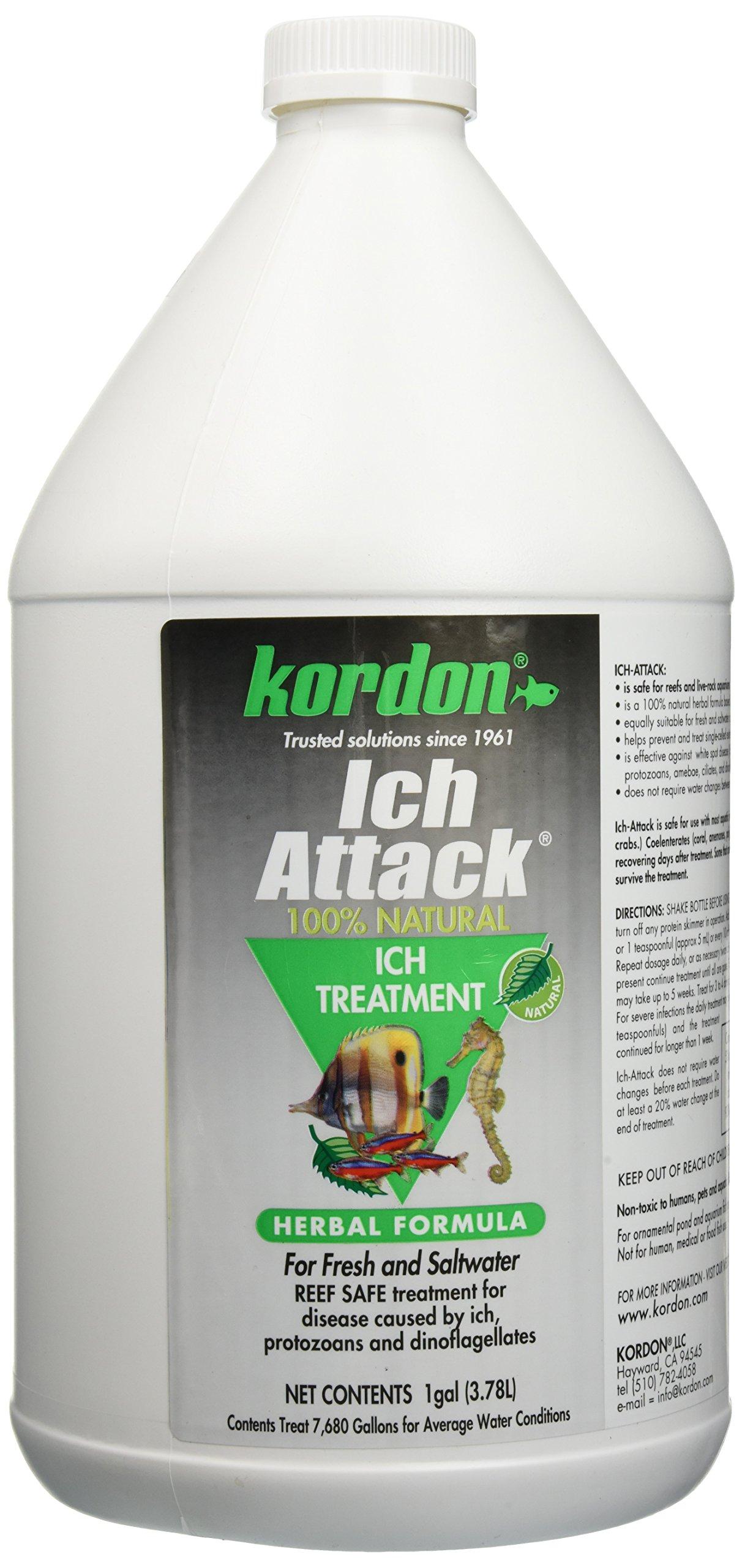 KORDON  #39462  Ich Attack for Aquarium, 1-Gallon ONLY by Kordon
