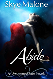 Abide: An Awakened Fate Novella