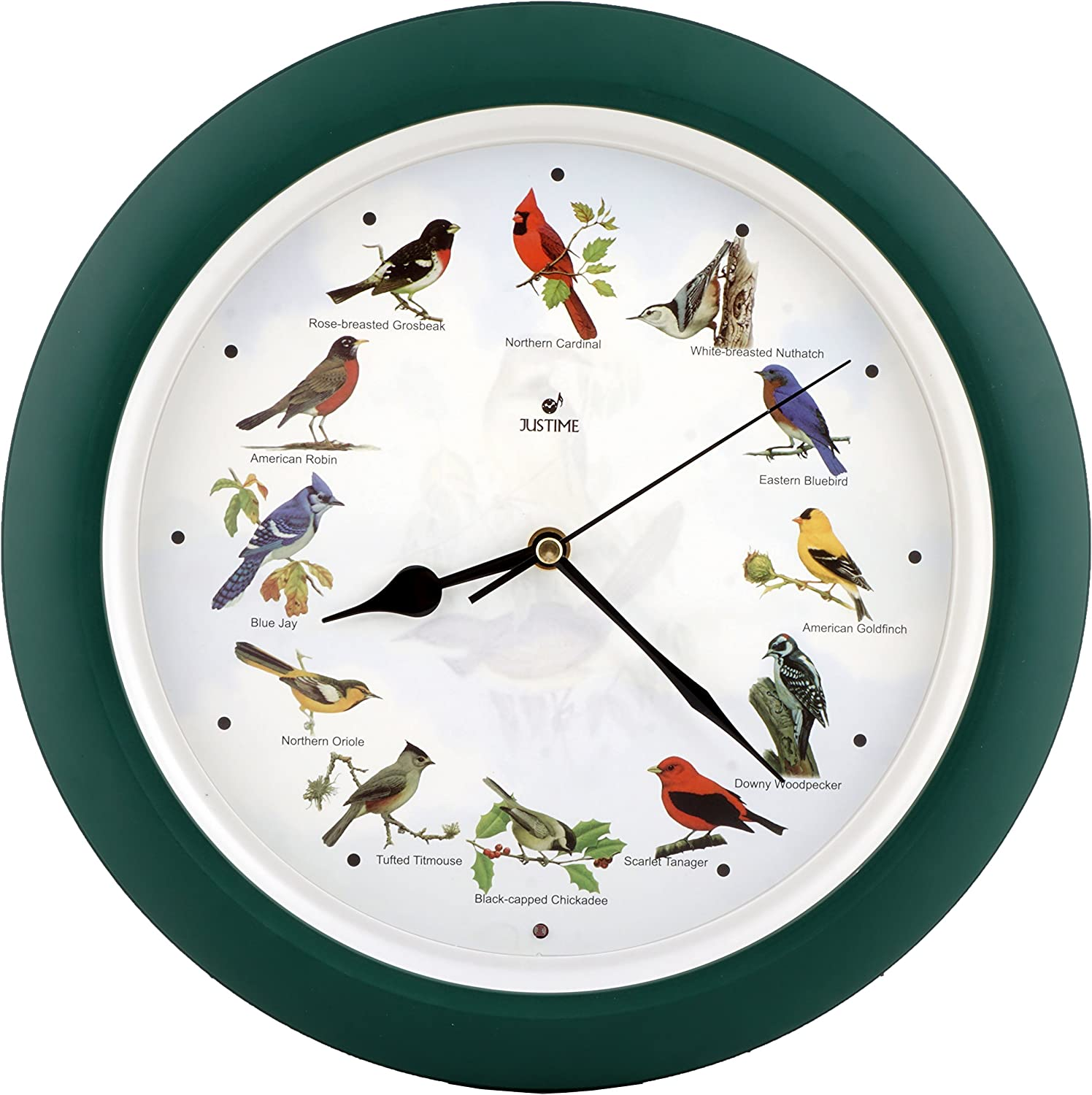 JUSTIME Lovely Collection 14-inch Plays 12 Popular North American Bird's Songs Wall Clock Mantel Clock Home Deco Multicolor (Green)
