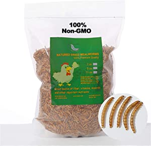 44 lbs Non-GMO Dried Mealworms for Wild Bird Chicken Fish,High-Protein,Lrage Meal Worms.