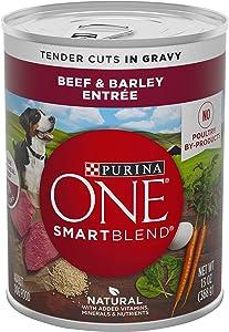 Purina ONE SmartBlend Canned Wet Dog Food