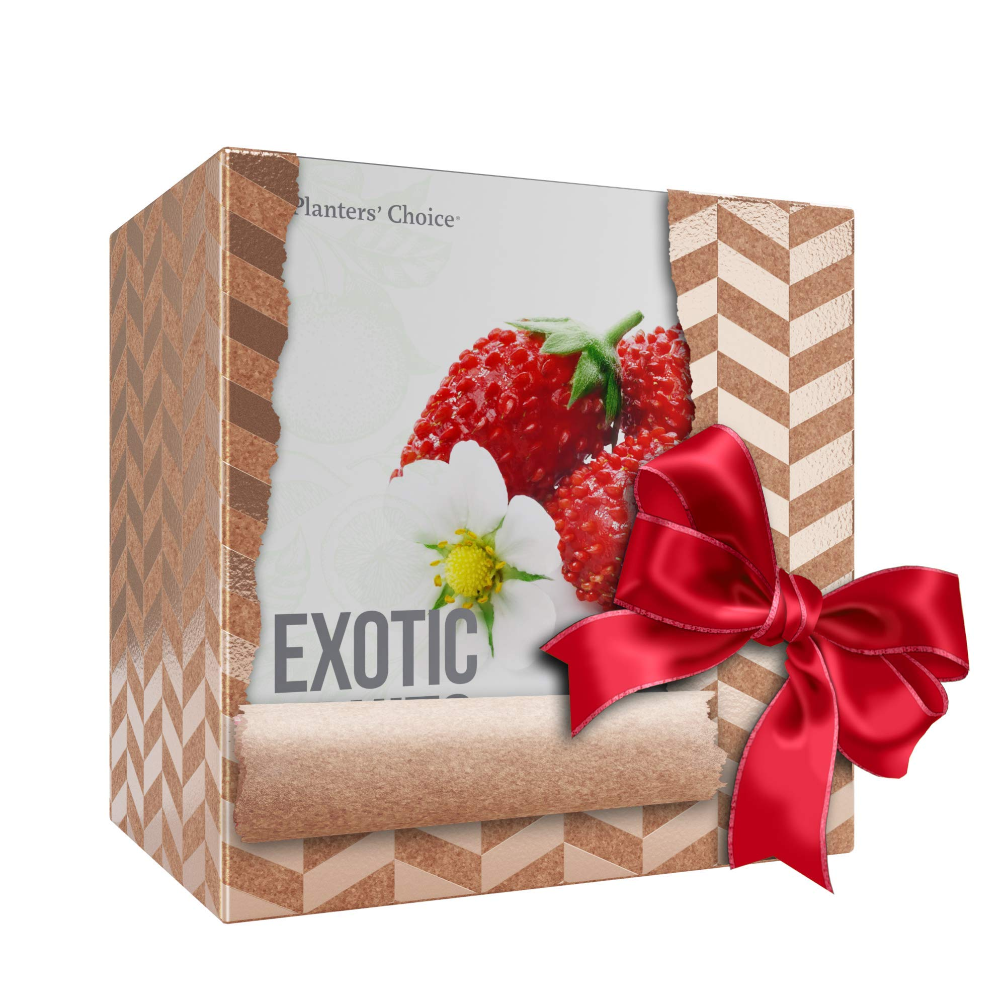Planters' Choice Exotic Fruits Growing Kit - Everything Included to Easily Grow 4 Unique Fruits - Strawberries, Goji Berries, Honeydew, Watermelon + Moisture Meter by Planters' Choice (Image #9)