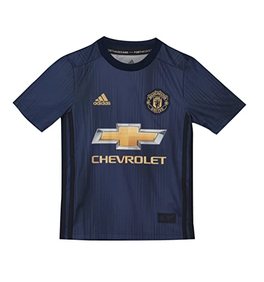 5c7e76bf5 Manchester United FC Official Football Gift Boys Third Kit Shirt 15-16  Years  Amazon.co.uk  Clothing