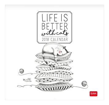 Life Is Better With Cats 2018 Wandkalender 30 X 29 Cm Amazonde