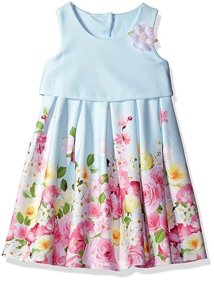 Amazon.com  Bonnie Jean Little Girls  Sleeveless Popover to Mesh ... b880b35b8