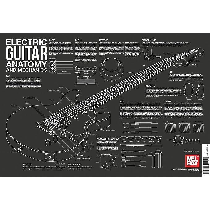Mel Bay E-Gitarre Anatomie und Mechanik Wand Diagramm: Amazon.de ...