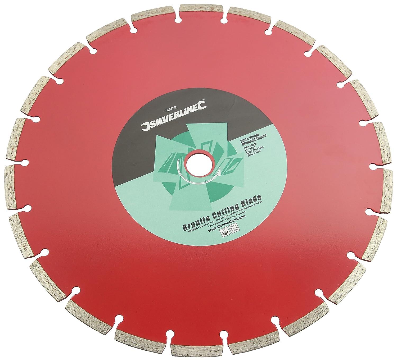 Silverline 793769 - Disco abrasivo (tamañ o: 300x20mm) Toolstream
