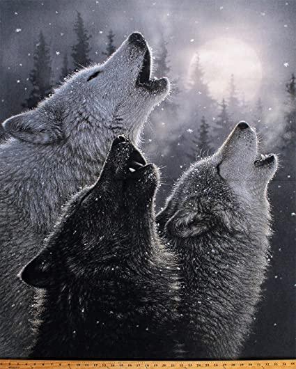 Realistic Pictures Of Wolves Howling At The Moon