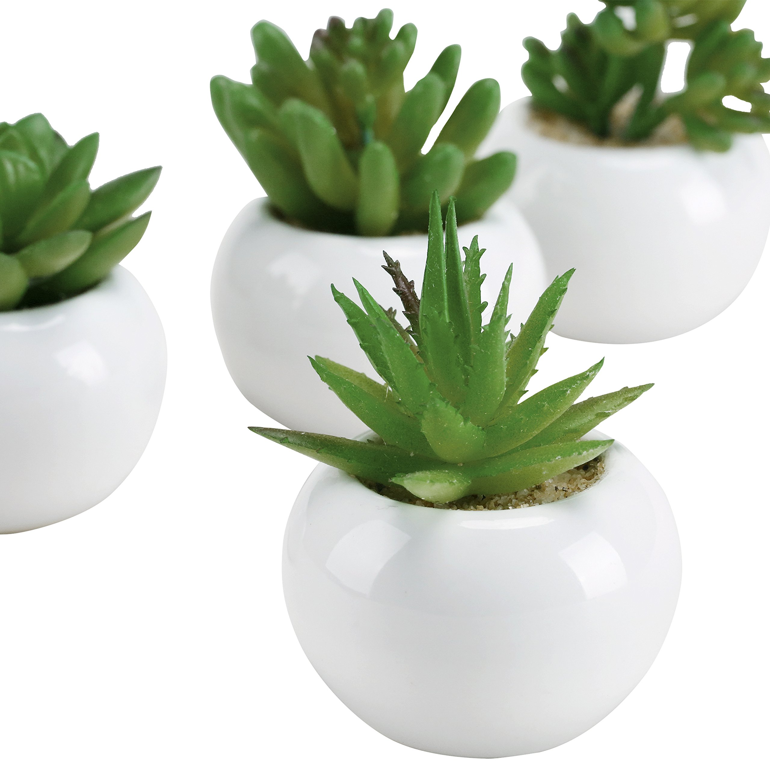 3-inch Mixed Green Artificial Succulent Plants in Round Glazed White Ceramic Pots, Set of 4 by MyGift (Image #4)
