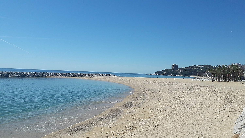 Naturschwamm zur Gesichtsreinigung GIURA aus dem Mittelmeer Inhalt 1 1