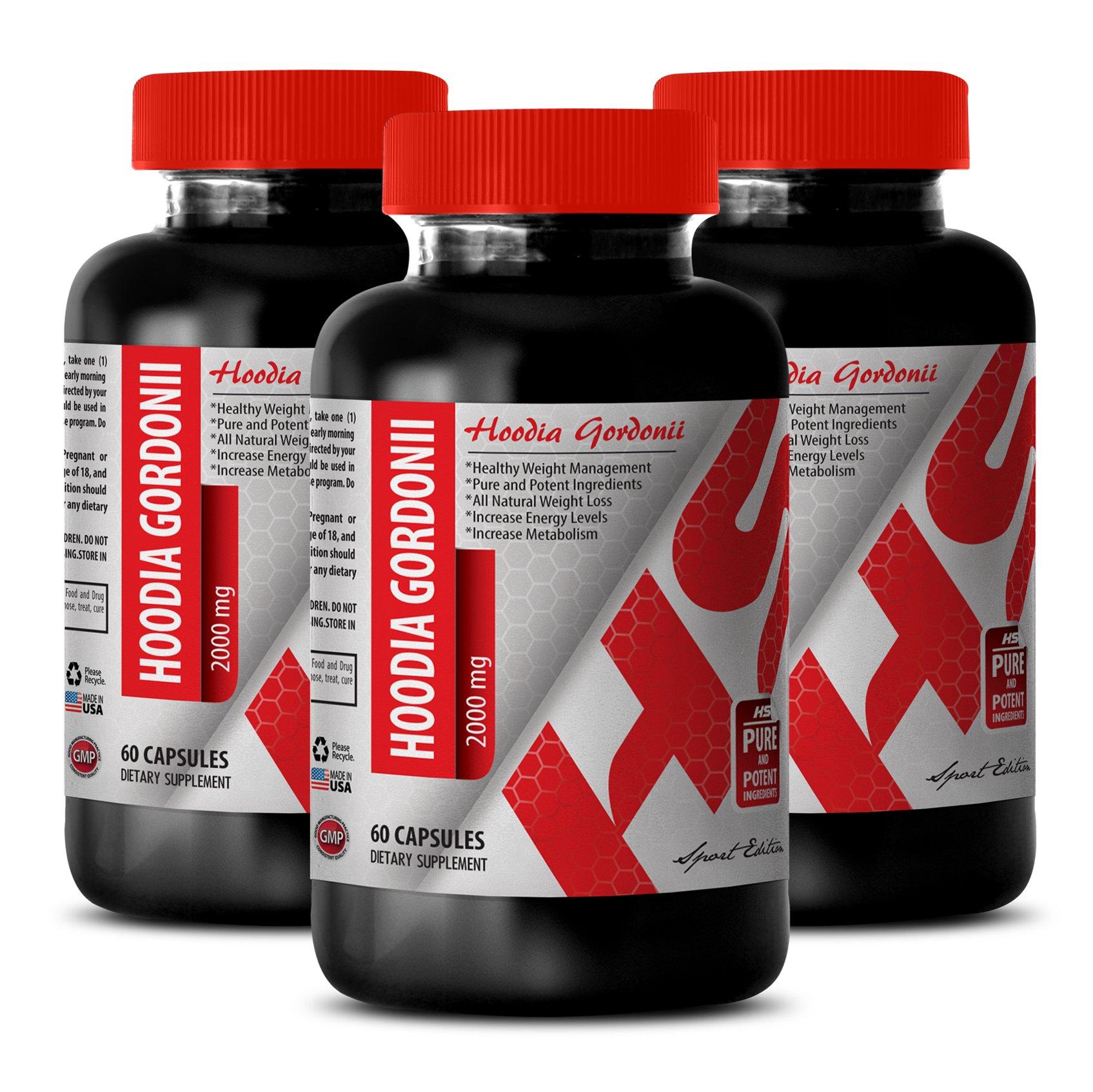 Hoodia supplement - HOODIA GORDONII POWDER 2000 MG - fat burner (3 Bottles)