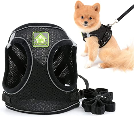 SMALLLEE/_LUCKY/_STORE Soft Mesh Corduroy Reflective Cat Harness and Leash Set Escape Proof Adjustable No Pull Choke Safe Walking Jacket Boy Small Puppies Kitten Dog Haness Vest,Blue XS