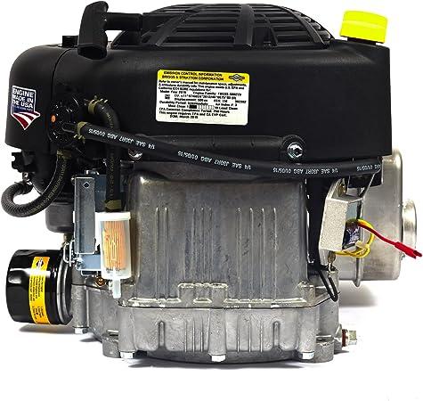Amazon.com: Briggs & Stratton Briggs and Stratton 31R976 ...