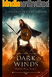 Dark Winds: Shadow's Fire Book 2 (Shadow's Fire Trilogy)