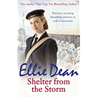 Shelter from the Storm: Cliffehaven 11 (The Cliffehaven Series)