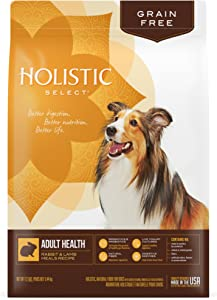 Holistic Select Natural Dry Dog Food Grain Free Rabbit & Lamb