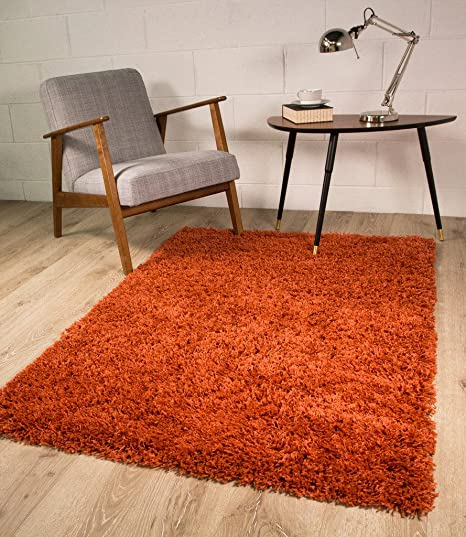Luxury Burnt Orange Terracotta Shaggy Soft Pile Living Room Bedroom Shag  Area Rug Mat 2\' x 3\'7\