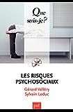 Les risques psychosociaux: « Que sais-je ? » n° 3958