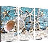 Cuadros Camara - Quadro moderno fotografico con paesaggio marino vintage, con conchiglie, spiaggia e sabbia, 97x 62cm, rif. 26479