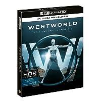Westworld - Stagione 01 (3 4K Ultra Hd+3 Blu Ray) [Italia] [Blu-ray]