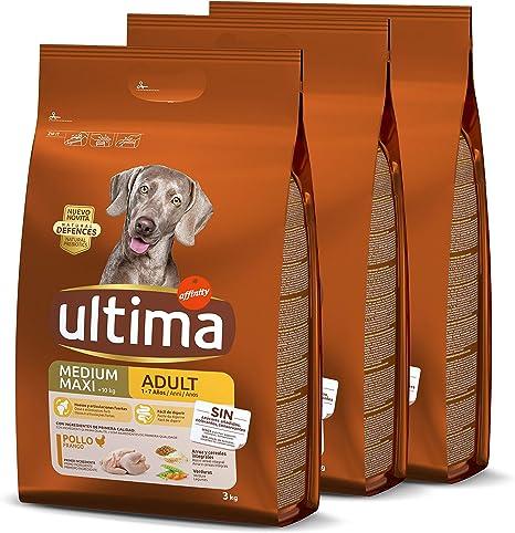 ultima Pienso para Perro Medium-Maxi Adulto con Pollo, Pack de 3 x 3 kg - Total 9 kg