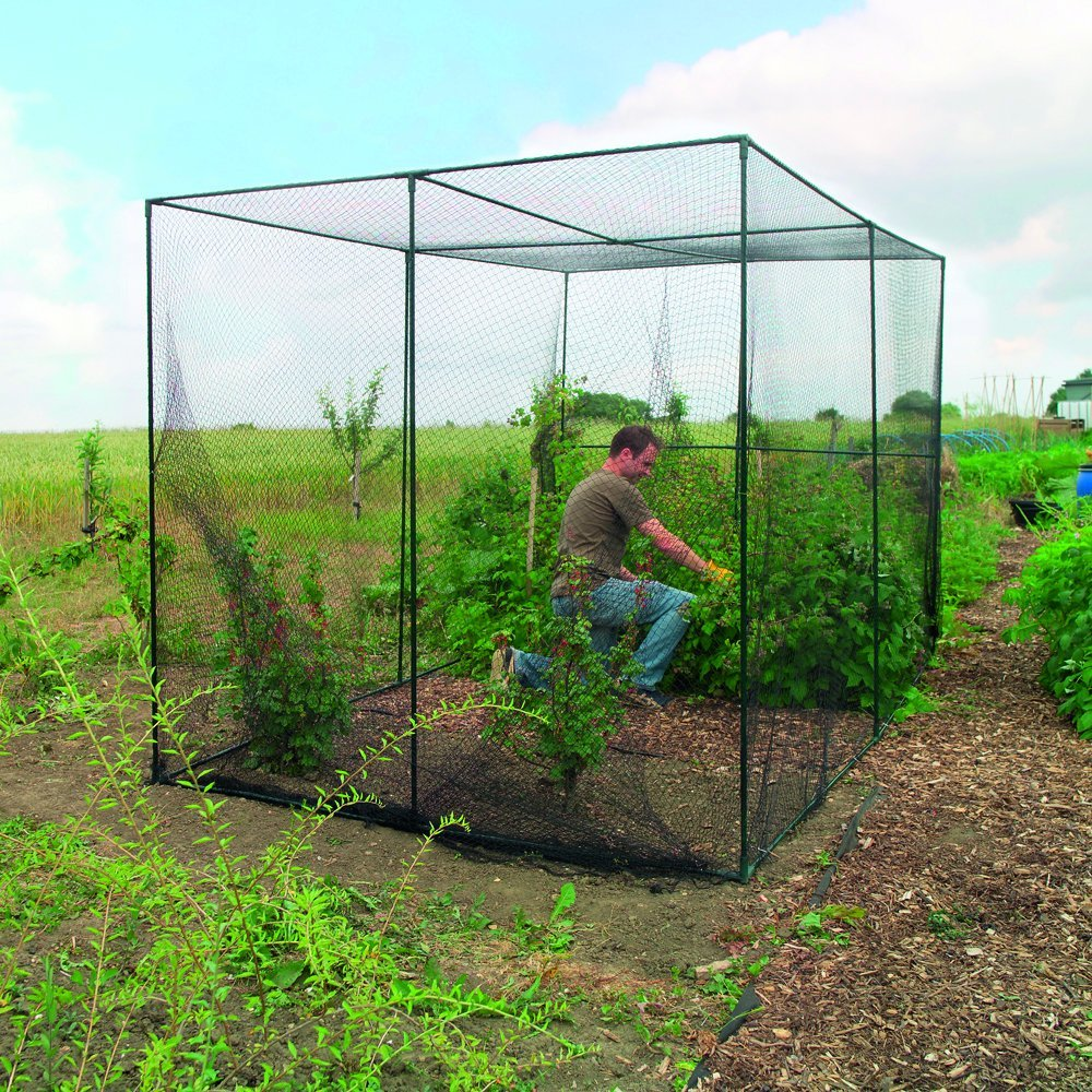 Gardman 7662 Fruit Cage Large, 118'' Long x 78'' Wide x 78'' High