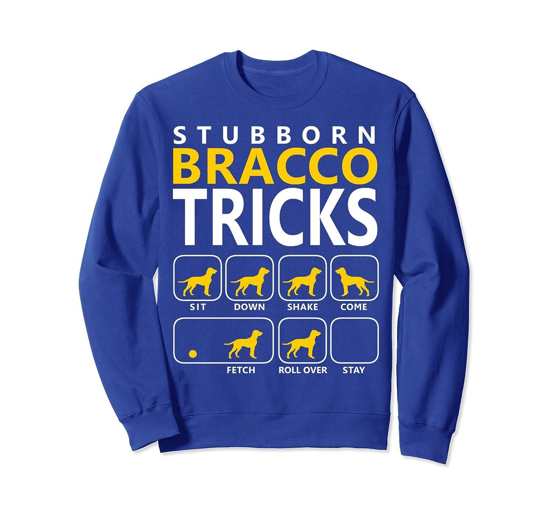 Bracco Sweatshirt-mt