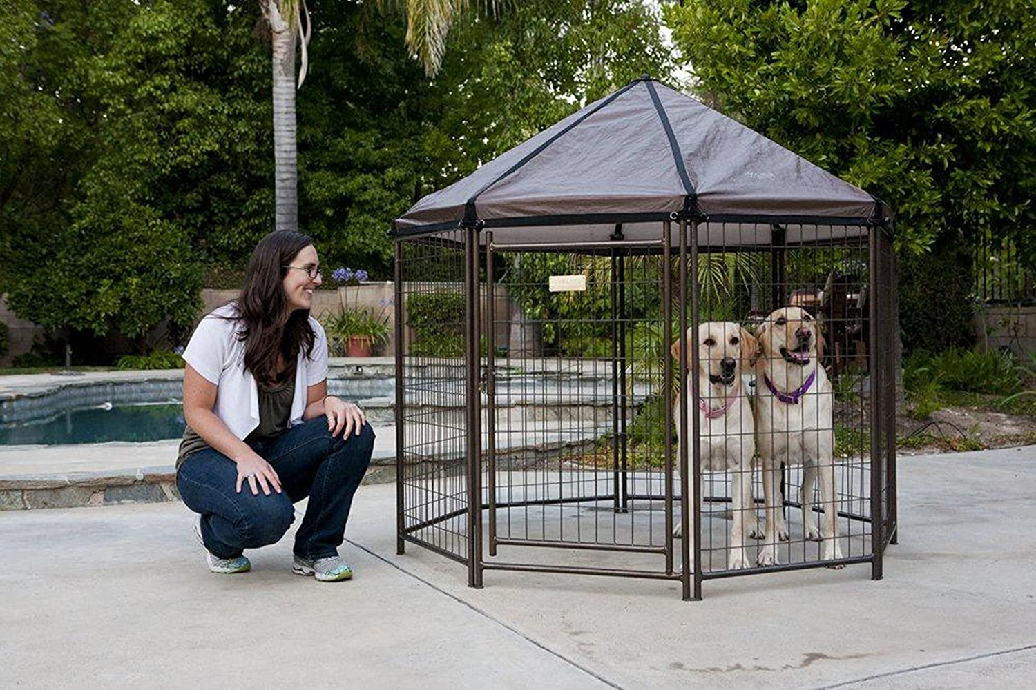 advantek pet gazebo reviews image 1