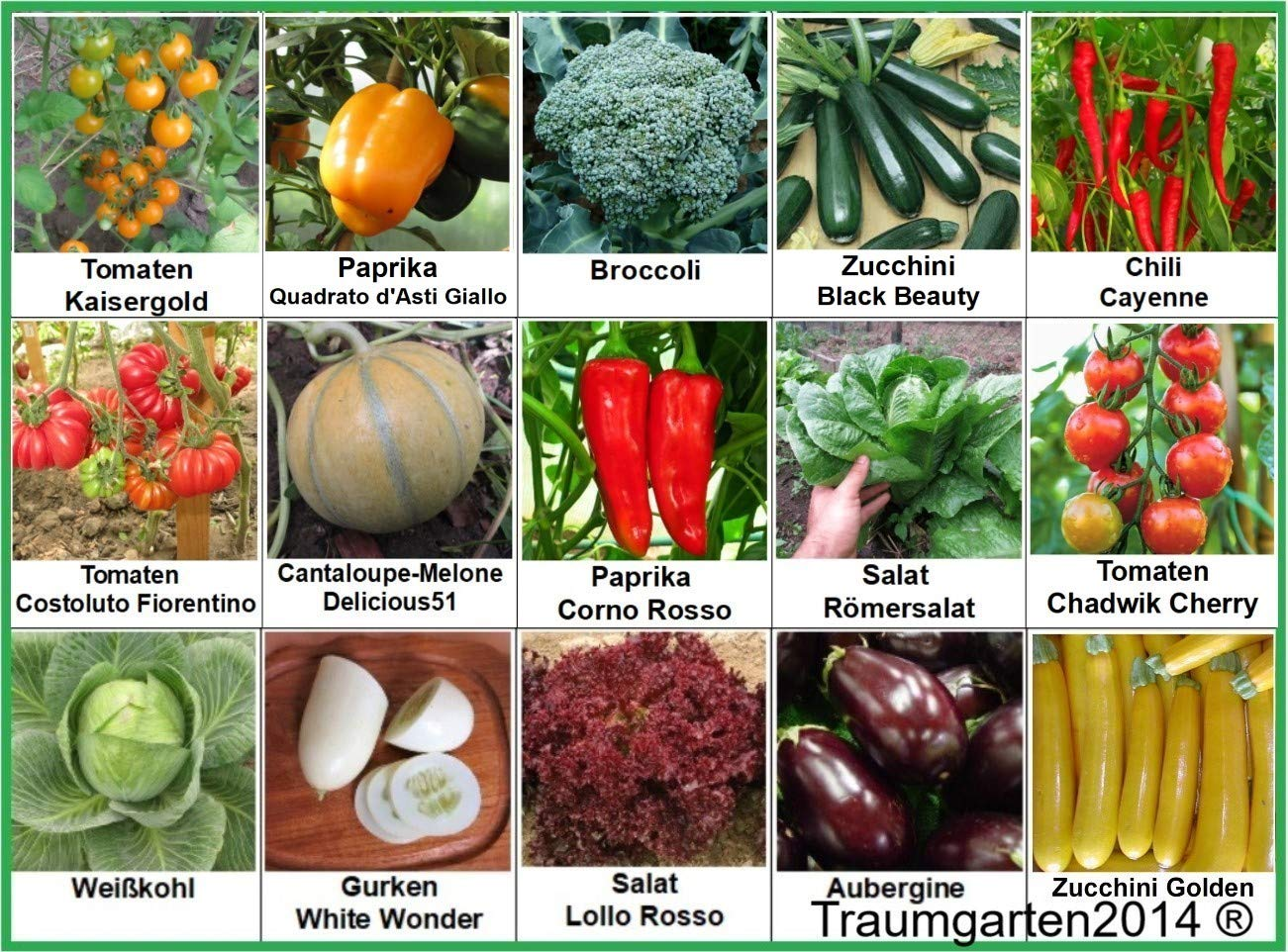 Gem/üse Set 2 Broccoli Gurken Zucchini Wei/ßkohl Aubergine Salat Tomate Chili Paprika Melone Samen Saatgut