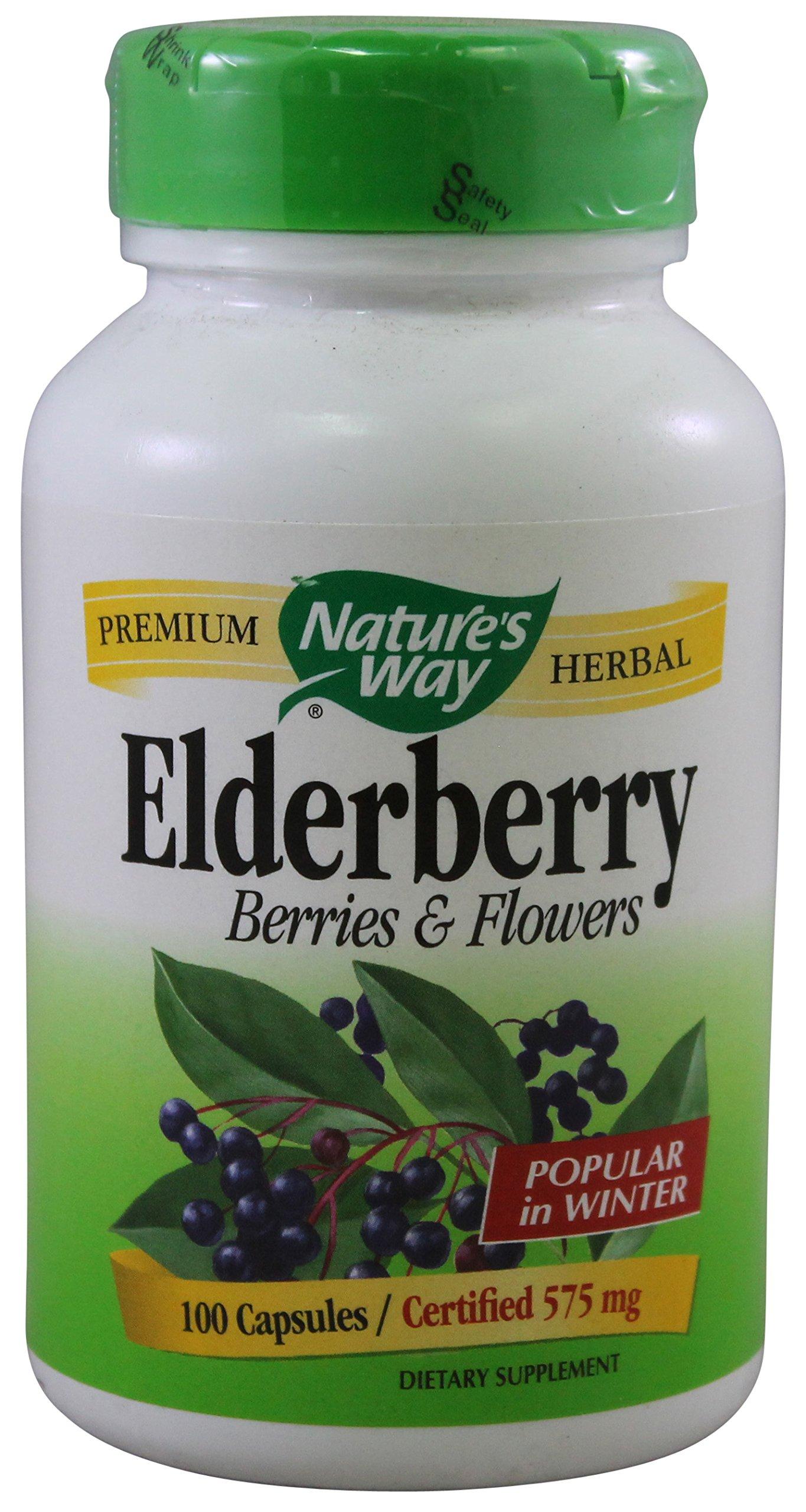 Nature S Way Elderberry Extract